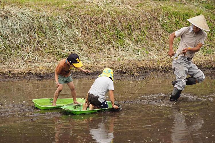霧島里山自然学校-田んぼでどろんこ遊び